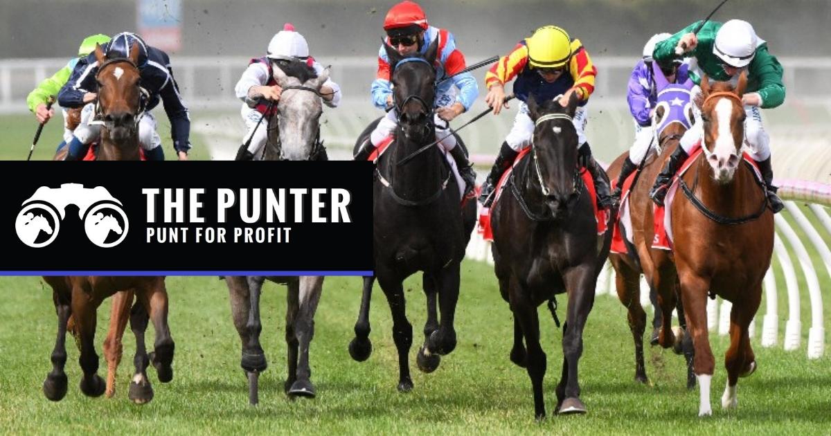 SA Horse Racing Tips